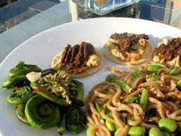 outdoors with noodles and fiddleheads